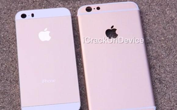 Apple iPhone 6背面徽标不太可能充当通知灯